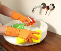 Regular Domestic Cleaning Ware