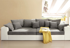 Sofa Cleaning Ware