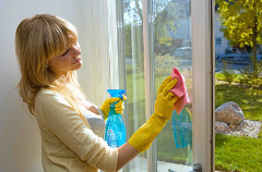 Window Cleaning Ware